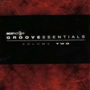Cover for album Divine Earth Essence - Groove Essentials V.2